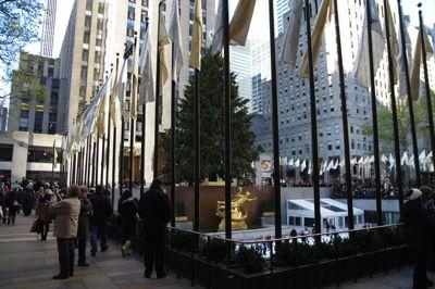 12-1-2010.jpg
